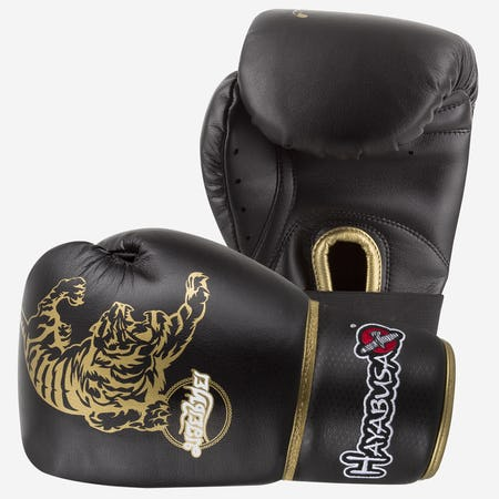 Muay Thai 10oz Gloves